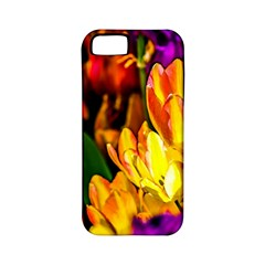 Fancy Tulip Flowers In Spring Apple Iphone 5 Classic Hardshell Case (pc+silicone)