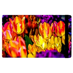 Fancy Tulip Flowers In Spring Ipad Mini 4 by FunnyCow