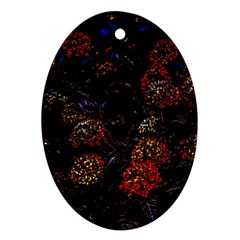 Floral Fireworks Ornament (oval) by FunnyCow