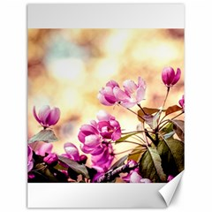 Paradise Apple Blossoms Canvas 12  X 16  by FunnyCow