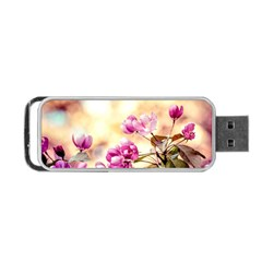 Paradise Apple Blossoms Portable Usb Flash (two Sides) by FunnyCow