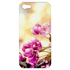 Paradise Apple Blossoms Apple Iphone 5 Hardshell Case by FunnyCow