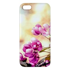 Paradise Apple Blossoms Iphone 5s/ Se Premium Hardshell Case by FunnyCow