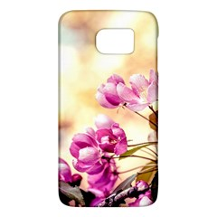 Paradise Apple Blossoms Samsung Galaxy S6 Hardshell Case  by FunnyCow