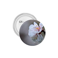 Rainy Day Of Hanami Season 1 75  Buttons by FunnyCow