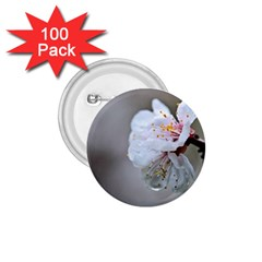 Rainy Day Of Hanami Season 1 75  Buttons (100 Pack)  by FunnyCow