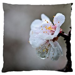 Rainy Day Of Hanami Season Large Cushion Case (two Sides)