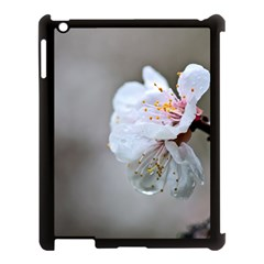 Rainy Day Of Hanami Season Apple Ipad 3/4 Case (black) by FunnyCow