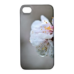 Rainy Day Of Hanami Season Apple Iphone 4/4s Hardshell Case With Stand by FunnyCow