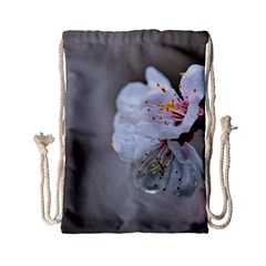 Rainy Day Of Hanami Season Drawstring Bag (small) by FunnyCow