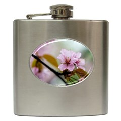 Soft Rains Of Spring Hip Flask (6 Oz) by FunnyCow