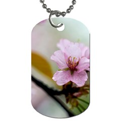 Soft Rains Of Spring Dog Tag (two Sides) by FunnyCow