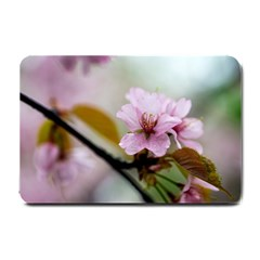 Soft Rains Of Spring Small Doormat  by FunnyCow