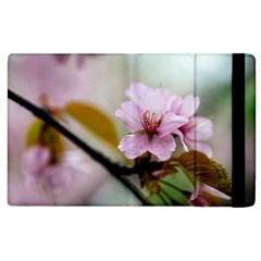 Soft Rains Of Spring Apple Ipad 3/4 Flip Case