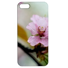 Soft Rains Of Spring Apple Iphone 5 Hardshell Case With Stand