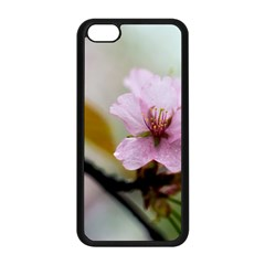 Soft Rains Of Spring Apple Iphone 5c Seamless Case (black) by FunnyCow