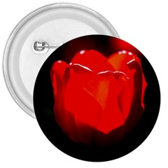 Red Tulip A Bowl Of Fire 3  Buttons by FunnyCow