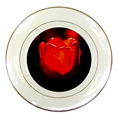 Red Tulip A Bowl Of Fire Porcelain Plates by FunnyCow
