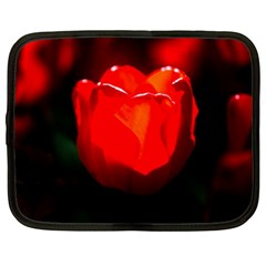 Red Tulip A Bowl Of Fire Netbook Case (xl)