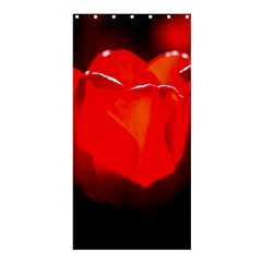 Red Tulip A Bowl Of Fire Shower Curtain 36  X 72  (stall)  by FunnyCow