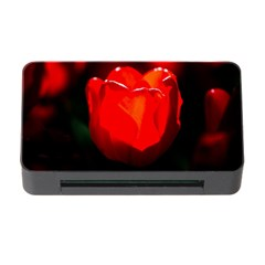 Red Tulip A Bowl Of Fire Memory Card Reader With Cf by FunnyCow