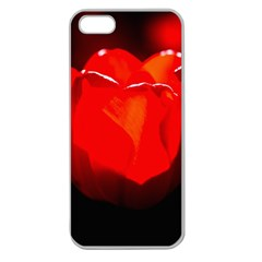 Red Tulip A Bowl Of Fire Apple Seamless Iphone 5 Case (clear) by FunnyCow