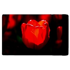 Red Tulip A Bowl Of Fire Apple Ipad 3/4 Flip Case by FunnyCow