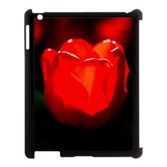 Red Tulip A Bowl Of Fire Apple Ipad 3/4 Case (black)