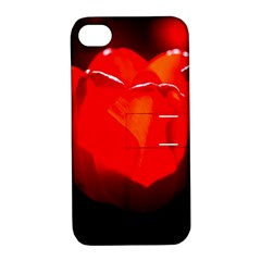 Red Tulip A Bowl Of Fire Apple Iphone 4/4s Hardshell Case With Stand by FunnyCow