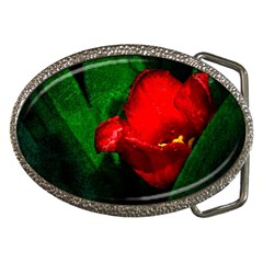 Red Tulip After The Shower Belt Buckles by FunnyCow