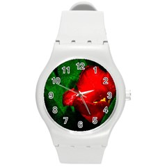 Red Tulip After The Shower Round Plastic Sport Watch (m) by FunnyCow