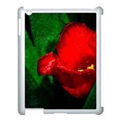 Red Tulip After The Shower Apple Ipad 3/4 Case (white) by FunnyCow