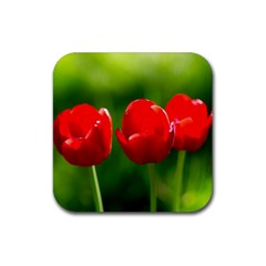 Three Red Tulips, Green Background Rubber Coaster (square)