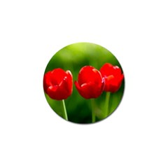 Three Red Tulips, Green Background Golf Ball Marker (10 Pack)
