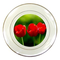 Three Red Tulips, Green Background Porcelain Plates by FunnyCow