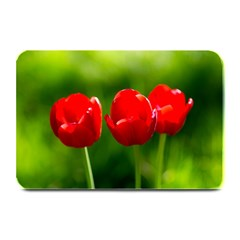 Three Red Tulips, Green Background Plate Mats
