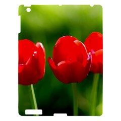 Three Red Tulips, Green Background Apple Ipad 3/4 Hardshell Case by FunnyCow