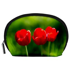 Three Red Tulips, Green Background Accessory Pouch (large)