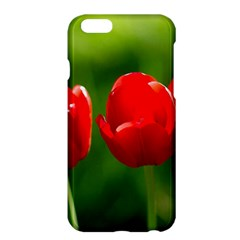 Three Red Tulips, Green Background Apple Iphone 6 Plus/6s Plus Hardshell Case by FunnyCow