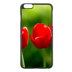 Three Red Tulips, Green Background Apple Iphone 6 Plus/6s Plus Black Enamel Case by FunnyCow