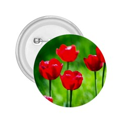 Red Tulip Flowers, Sunny Day 2 25  Buttons by FunnyCow