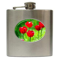 Red Tulip Flowers, Sunny Day Hip Flask (6 Oz) by FunnyCow