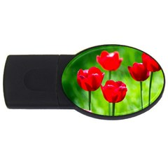 Red Tulip Flowers, Sunny Day Usb Flash Drive Oval (2 Gb) by FunnyCow