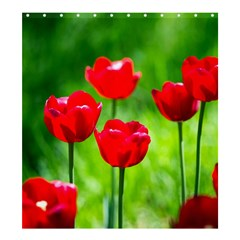 Red Tulip Flowers, Sunny Day Shower Curtain 66  X 72  (large)  by FunnyCow