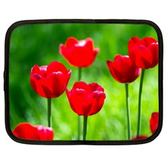 Red Tulip Flowers, Sunny Day Netbook Case (xxl) by FunnyCow