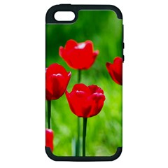 Red Tulip Flowers, Sunny Day Apple Iphone 5 Hardshell Case (pc+silicone) by FunnyCow