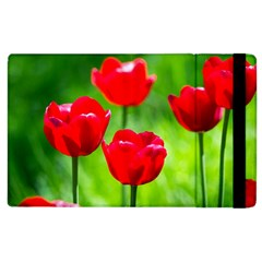 Red Tulip Flowers, Sunny Day Apple Ipad 2 Flip Case by FunnyCow