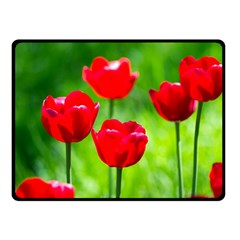 Red Tulip Flowers, Sunny Day Double Sided Fleece Blanket (small)  by FunnyCow