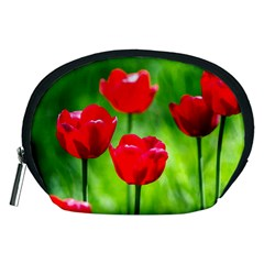 Red Tulip Flowers, Sunny Day Accessory Pouch (medium) by FunnyCow