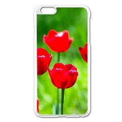 Red Tulip Flowers, Sunny Day Apple Iphone 6 Plus/6s Plus Enamel White Case by FunnyCow